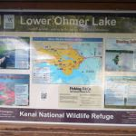 Lower Ohmer Lake
